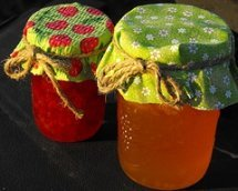Homemade Jelly Recipes from Scratch