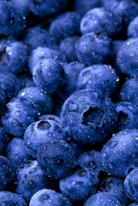 Fresh Blueberry Recipes