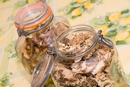 How to Store Dried Morel Mushrooms