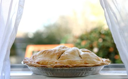 Homemade Pie Recipes from Scratch