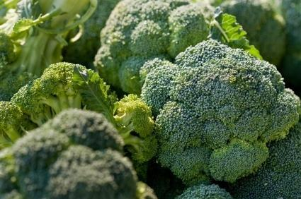 Fresh Broccoli Recipes
