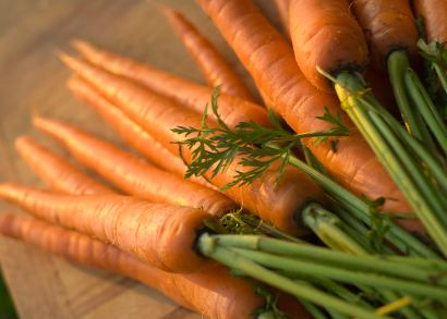 Fresh Carrot Recipes