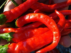 Cayenne Pepper Recipe