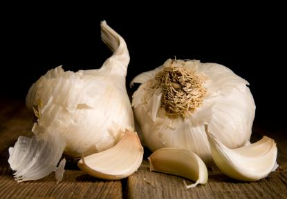 Easy Garlic Recipes