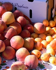How to can Peaches, Nectarines and Apricots