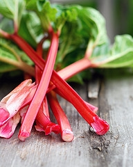 How to can Rhubarb