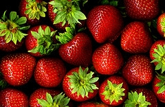 Fresh Strawberries to be canned