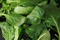 How to can Spinach and other Greens